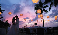 The Caribbean Weddings