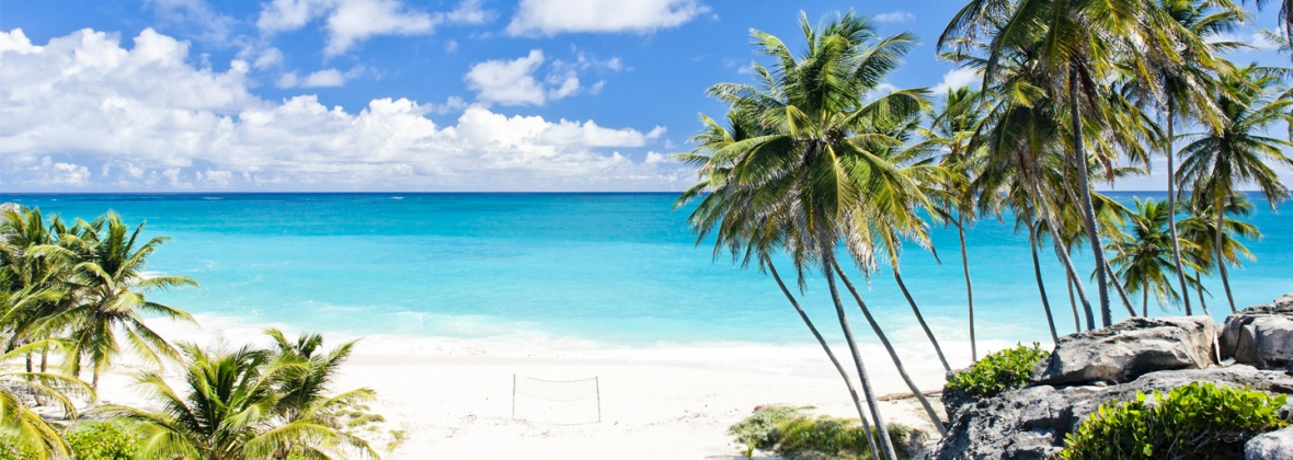 Caribbean weddings abroad packages get married in the caribbean get married in caribbean junglespirit Image collections