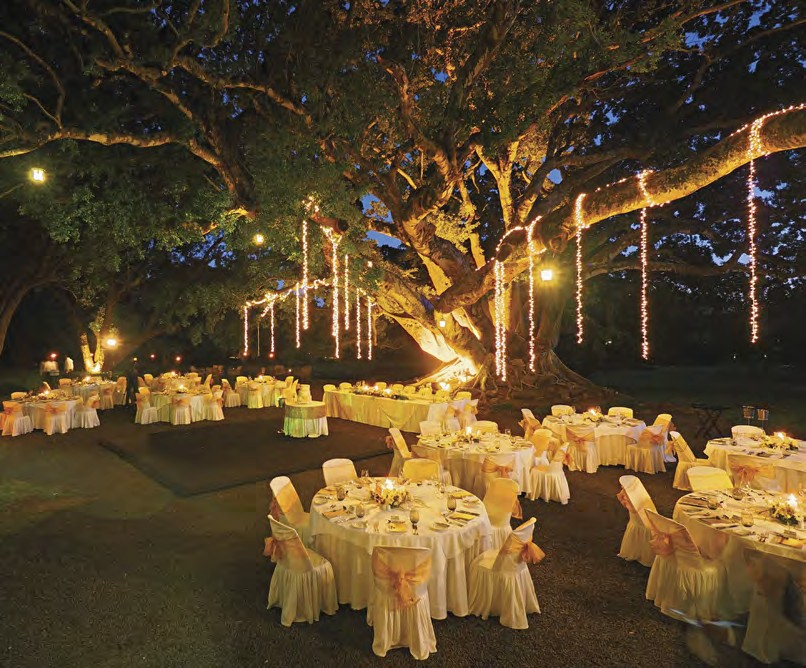 Chateau de bel ombre perfect weddings abroad mauritius indian ocean junglespirit Images